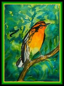 Blackburnian Warbler, male, 5x7, watercolor, March 1, 2018.