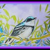 Cerulean Warbler, male, 5x7, watercolor, March 1, 2018.