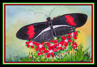 2. Crimson-patched Longwing, Heliconius erato petiverana, S Texas-Panama. 5.5x8.5, watercolor, acrylic & ink, jan 4, 2019.PICT0008A