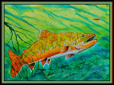 19-Big Brookie - Going for the Micky Finn, 11x15, watercolor, acrylic & ink on paper, feb 9, 2020.