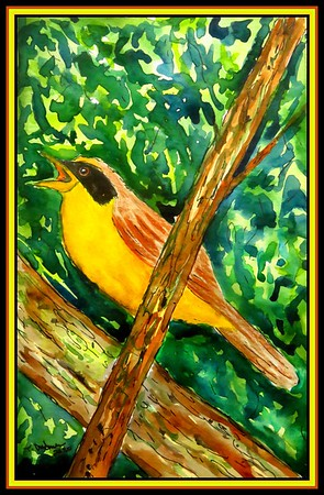 1. Masked Yellowthroat - Argentina, 5.5x8,5, watercolor & ink, jan 1, 2020. to Aranda Marin Enrique, Santa Fe, Argentina, jan 2, 2020.
