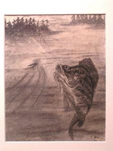 Black Crappie, jan 12, 1962, charcoal & pastel, 8x10
