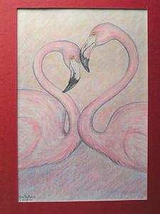American Flamingos, nov 1993, color pencil, 6x9