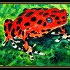161. Strawberry Poison Dart Frog, 6x9, watercolor & pen, nov 8, 2017.DSCN01271.jpg