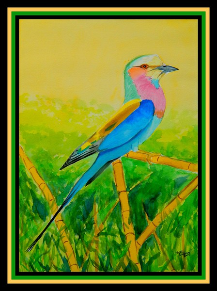 1-Lilac-breasted Roller, Chobe River, Botswana, oct 11, 2016., 10x14, watercolor, may 17, 2017.