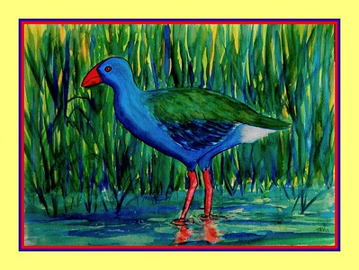 25.African Purple Swamphen, 10x14, watercolor, feb 20, 2017.