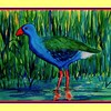 25.	African Purple Swamphen, 10x14, watercolor, feb 20, 2017.
