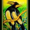47.Trumpeter Hornbills, Victoria Falls, Zimbabwe, 11x15, watercolor, apr 29, 2017