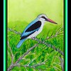 65.	Woodland Kingfisher, 9x12, watercolor, may 27, 2017.