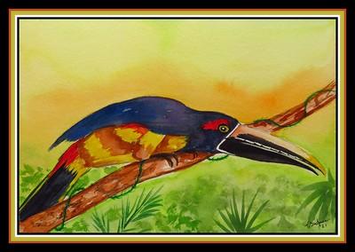 39.Stripe-billed Aracari, 6x9, watercolor & ink, april 8, 2021.