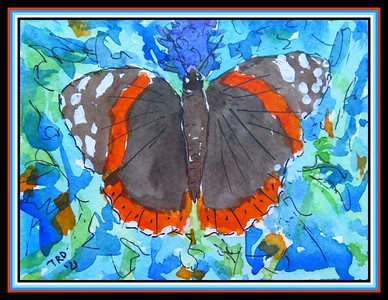 37.Red Admiral, 5x4.75,  watercolor, acrylic, ink, april 5, 2021.IMG_1808
