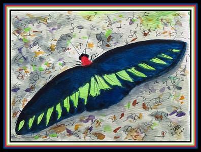 44.Rajah Brooks Birdwing - Malaysia, 4.5x6, watercolor, acrylic & ink, april 12, 2021.