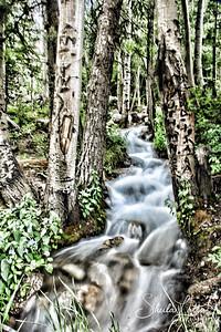 Colorado Creek near St. Elmo Ghost Town