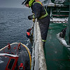 Ship's Pilot Disembarks<br /> The boarding and disembarking of pilots is often performed in challenging conditions and often at night. On this day we are lucky with the flat seas near Les Escoumins pilot station.