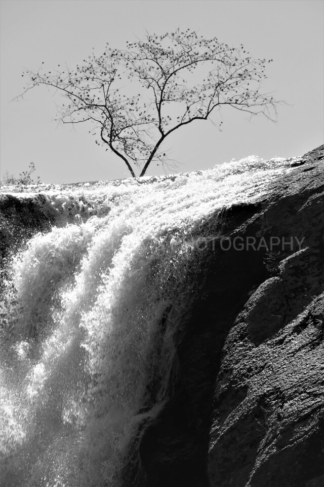 Guarding the Falls