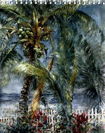 """Garden by the Sea, Troncones, Mexico,<br /> watercolor,<br /> 10.5"""" by 13"""""""