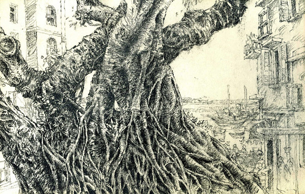 "Banyan Tree, Stanley, Hong Kong,<br /> Graphite,<br /> 8.5"" by 5.5"""