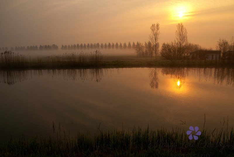 Morning Fog, Holland