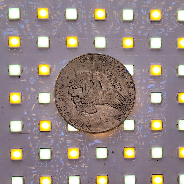 Silver dollar, ca .1982