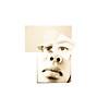 tweeple portrait