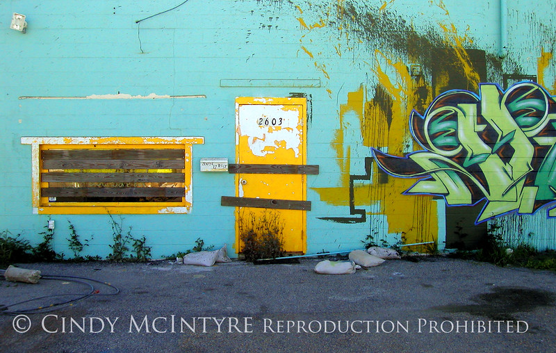Gulfport Graffiti Yellow Door db 13x19