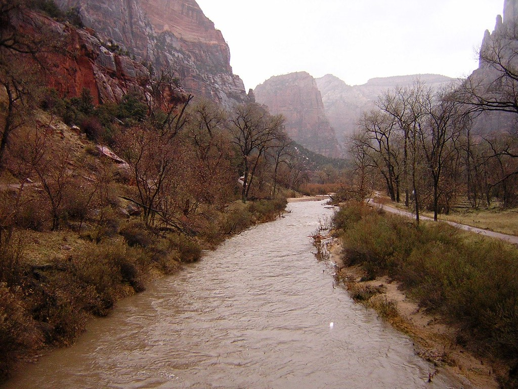 Zion National Park, December 2004. Image Copyright 2003 - 2006 by DJB.  All Rights Reserved.
