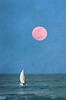 Rose Moon sail