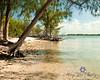 lagoon beach 24X30