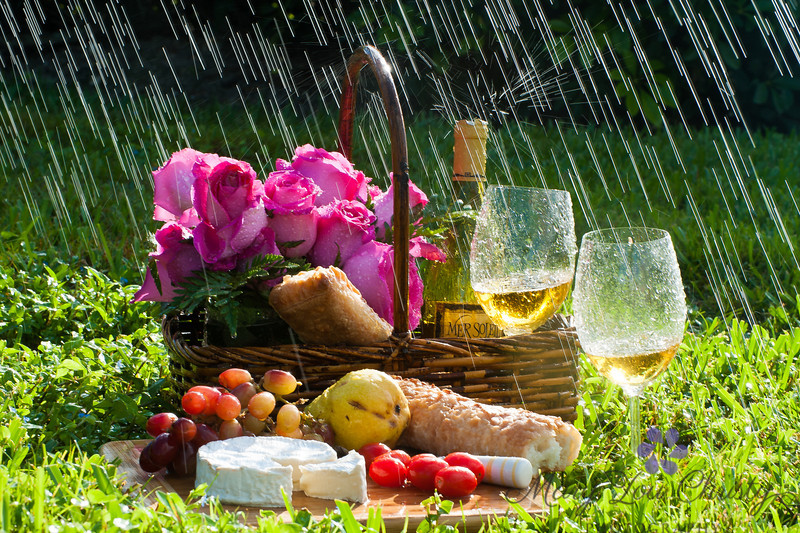 Rainy Day PIcnic 2