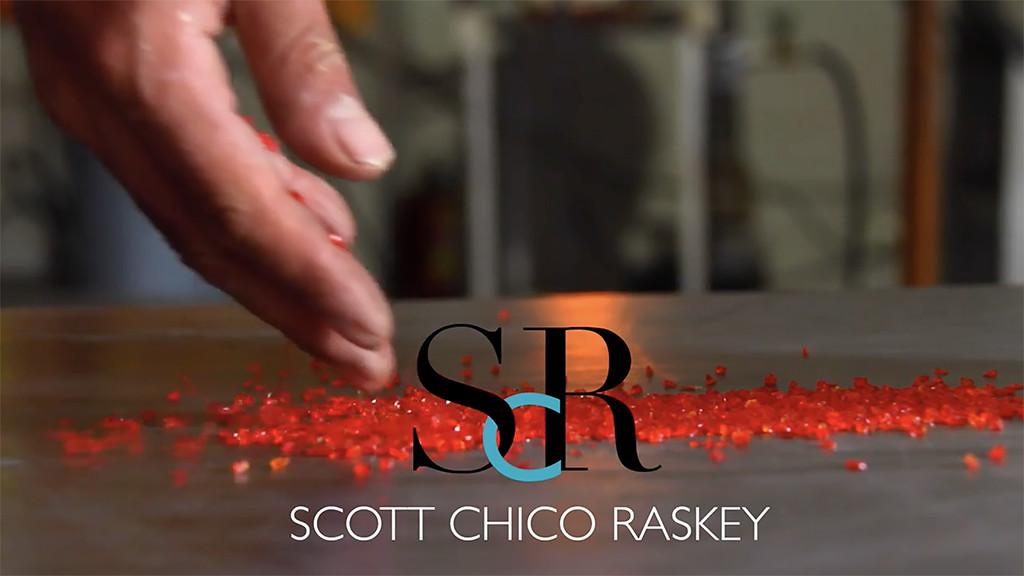 Scott Chico Raskey - Artist