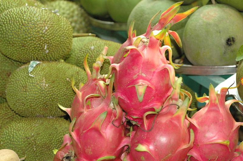 dragon fruit is my favorite