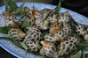 lunch of fresh water snails
