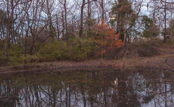 Moonrise over the upper pond