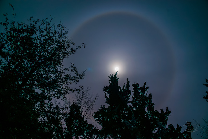 Circle around the moon