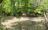 canoeMaking_010_06846