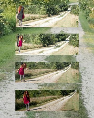 Wandering Minstrel