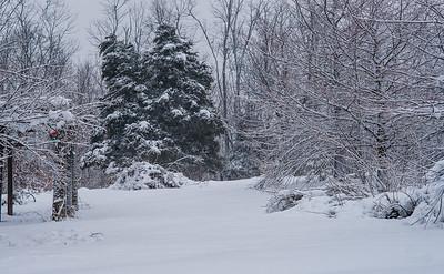 More snow at Mt. Pleasant.