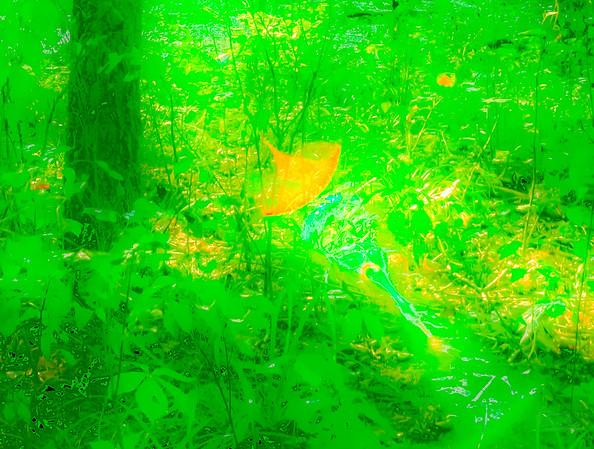 The greensward, detail.