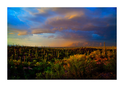 """Monsoon over the Catalinas 24""""x36""""  4 sizes avail."""