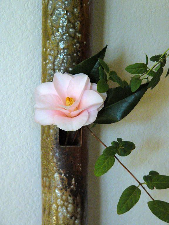 Wall Hanging Vase