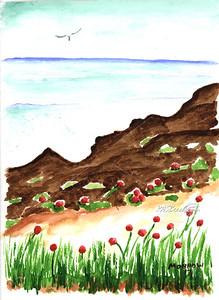 Beach_Flowers_266