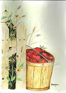 Basket of Apples  9x12