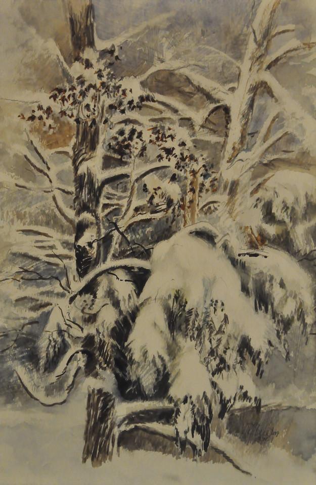Wet Snow, Pine and Oak Watercolor 17.5 X 12 Ala prima, Plein aire