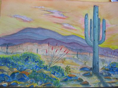 Sonoran Desert, mar 2012 CIMG6999