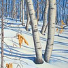 Painting - Birch Shadows