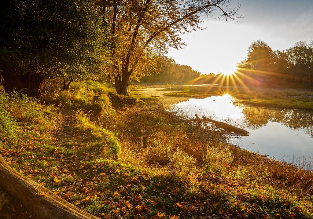 Sidecut Golden Morning