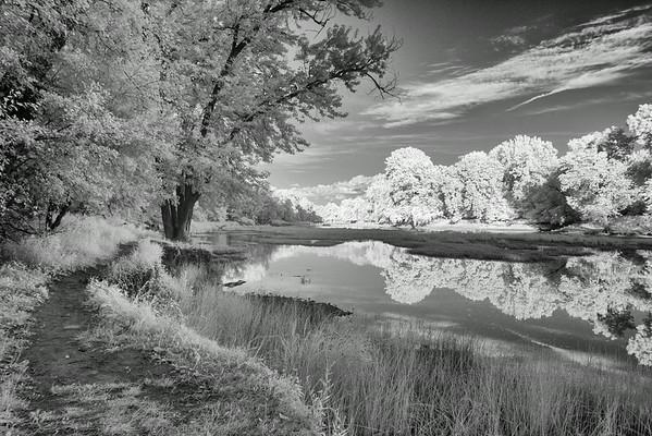 Sidecut Park, Infrared