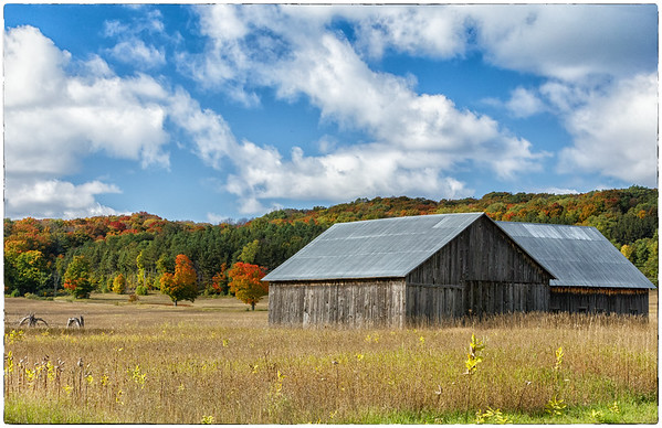 Old Barn, Backroads Mi