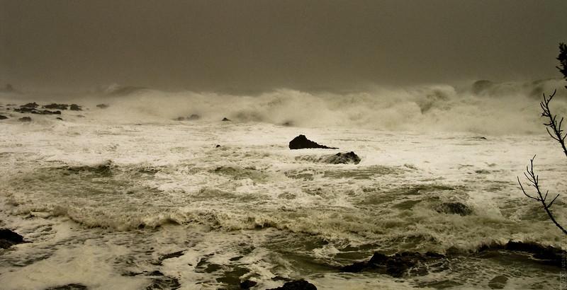 Houghton Bay Storm