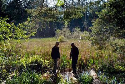 wetlands_21